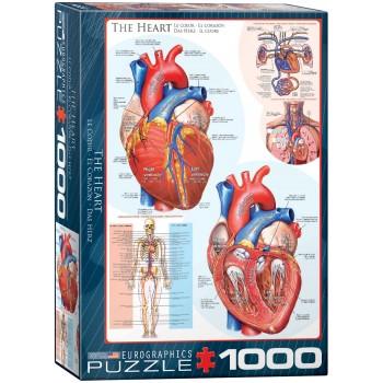 Eurographics Πάζλ 1000τεμ. 6000-0257 The heart